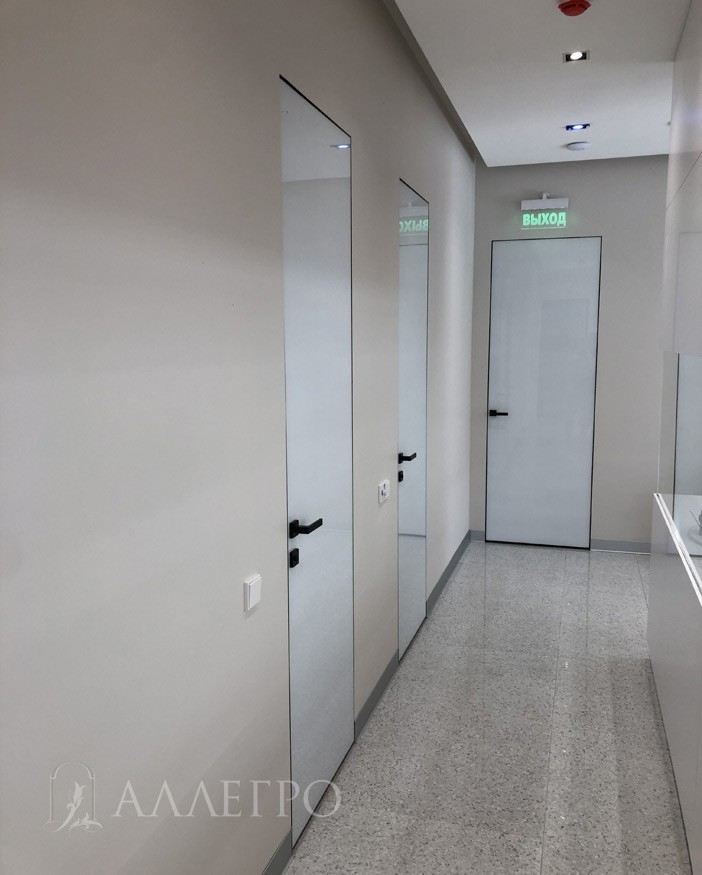 Стеклянные двери со скрытой коробкой