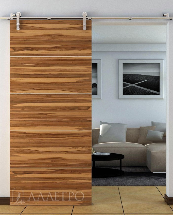 Раздвижные двери с полотном отделанным шпоном