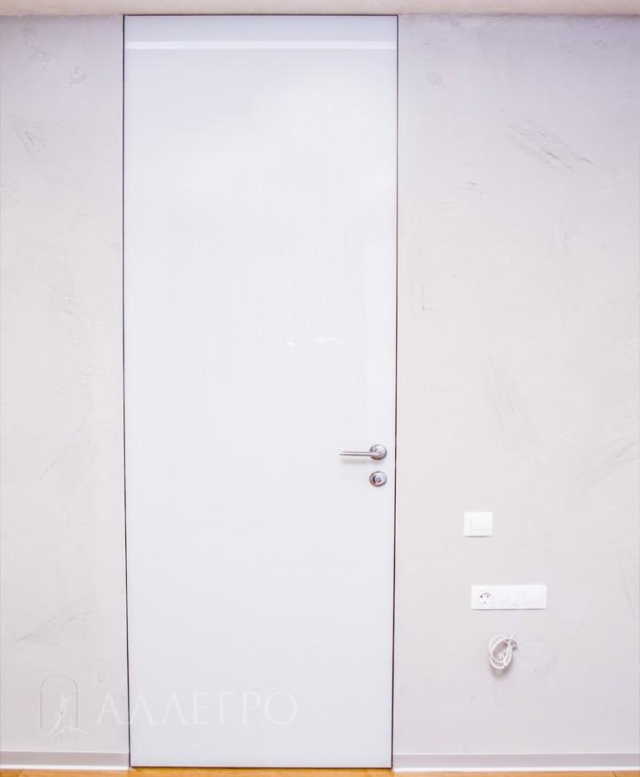 Фото стеклянной скрытой двери от пола до потолка