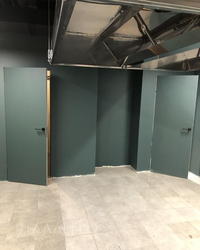 Потайные двери под покраску в открытом виде