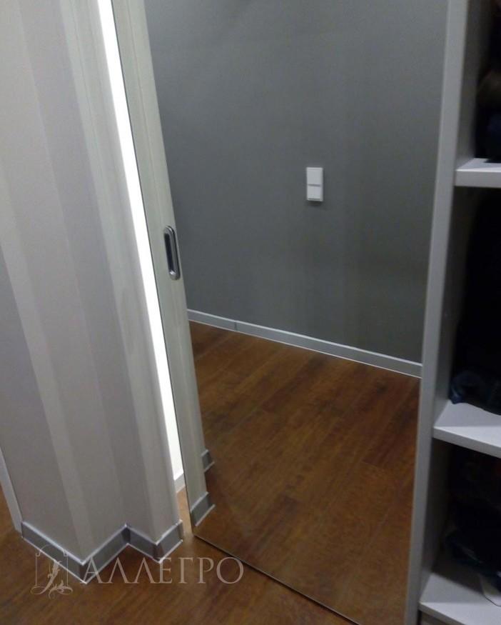 Зеркальное полотно раздвижной двери